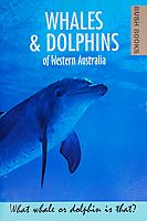 Whales and Dolphins book
