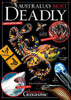 Australia's most deadly animals