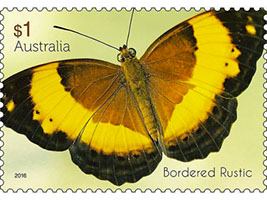 Rustic Butterfly Stamp