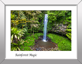 Rainforest Waterfall Print